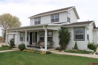 Montrose Single Family Home For Sale: 62107 Ida Road