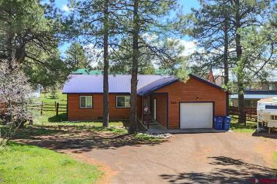 Pagosa Springs Single Family Home For Sale: 285 Inspiration Drive