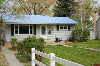 Montrose Single Family Home For Sale: 925 S 2nd Street