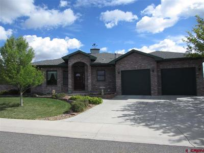 Montrose Single Family Home For Sale: 455 Cobble Drive