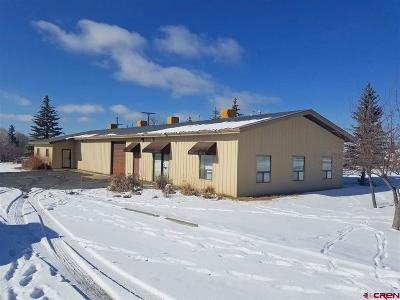 Bayfield Commercial For Sale: 25 Clover Drive