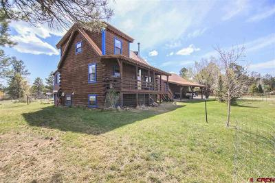 Pagosa Springs Single Family Home For Sale: 8 Marble Court