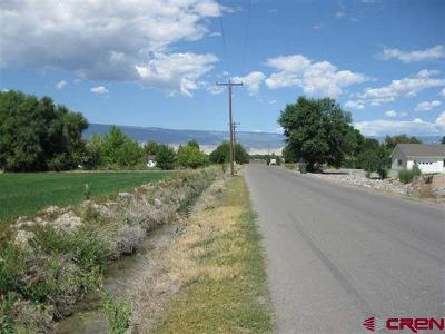 Delta Residential Lots & Land For Sale: 1725 Road
