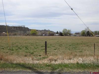 Residential Lots & Land For Sale: Orchard Grove Rd
