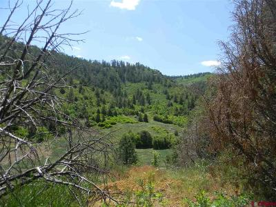 Mancos Residential Lots & Land For Sale: 6727 Road 46