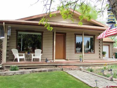 Montrose Single Family Home For Sale: 2545 Storm King Avenue
