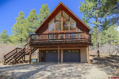 Pagosa Springs Single Family Home For Sale: 89 Pony Place