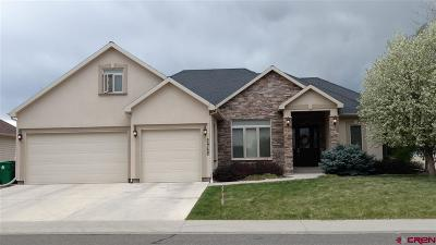 Montrose Single Family Home UC/Contingent/Call LB: 2962 Outlook Road