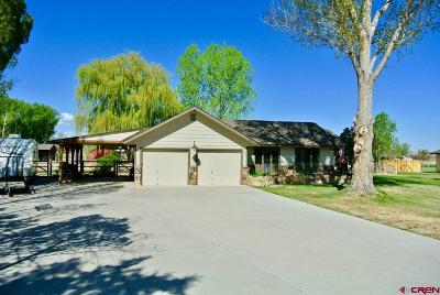 Montrose Single Family Home UC/Contingent/Call LB: 15189 6125 Road