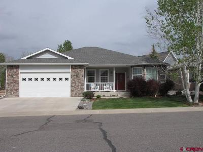 Montrose Single Family Home For Sale: 3805 Lone Tree Lane