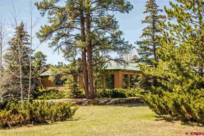Pagosa Springs Single Family Home For Sale: 136 Trappers Drive