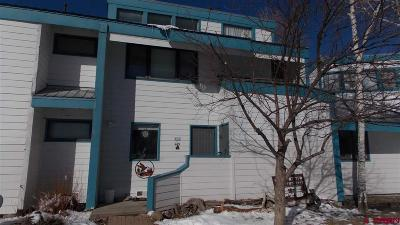 Pagosa Springs Condo/Townhouse For Sale: 233 Davis Cup Drive #4102