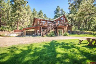 Pagosa Springs Single Family Home For Sale: 3700 Terry Robinson Rd