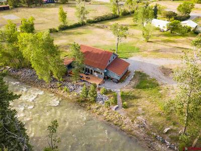 Ridgway Single Family Home For Sale: 17285 Highway 550