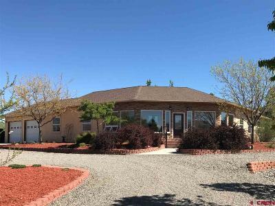 Montrose Single Family Home UC/Contingent/Call LB: 67515 Oakridge Lane
