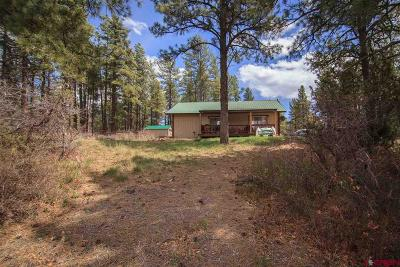 Pagosa Springs Single Family Home For Sale: 705 Buttercup Drive