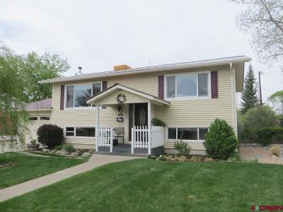 Montrose Single Family Home UC/Contingent/Call LB: 105 Spruce Drive