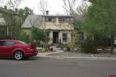 Montrose Single Family Home For Sale: 511 N 2nd Street