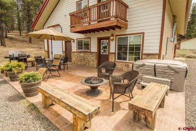 Pagosa Springs Single Family Home For Sale: 2729 Cr119