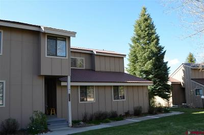 Pagosa Springs Condo/Townhouse UC/Contingent/Call LB: 145 Davis Cup Drive #4054
