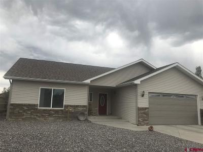 Montrose Single Family Home For Sale: 1962 Ouray Drive