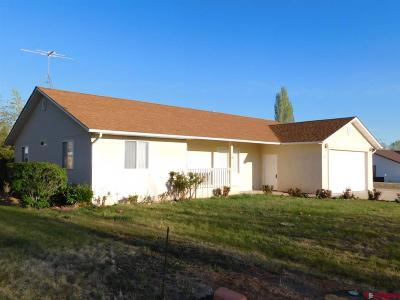 Cortez Single Family Home UC/Contingent/Call LB: 415 N Texas Street