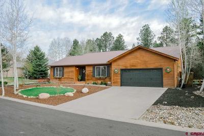 Durango Single Family Home For Sale: 938 Oak Drive