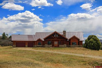 Pagosa Springs Single Family Home For Sale: 1071 Dichoso Street
