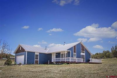 Durango Single Family Home For Sale: 40 Sundance Circle