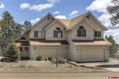 Pagosa Springs Single Family Home For Sale: 292 E Golf Place #A