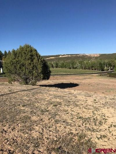 Cedaredge Residential Lots & Land For Sale: 215 Independence Avenue