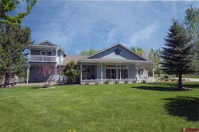 Montrose Single Family Home UC/Contingent/Call LB: 67165 Octillo Court