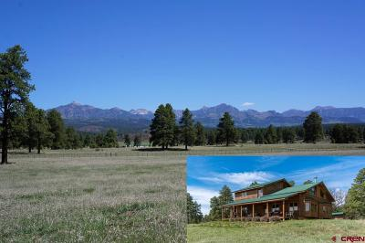 Pagosa Springs Single Family Home For Sale: 700 Honeybee Place