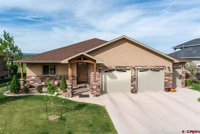 Montrose Single Family Home For Sale: 3872 Grand Mesa Drive