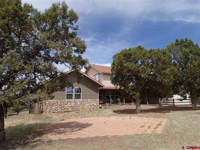 Durango Single Family Home For Sale: 1637 Cr 214