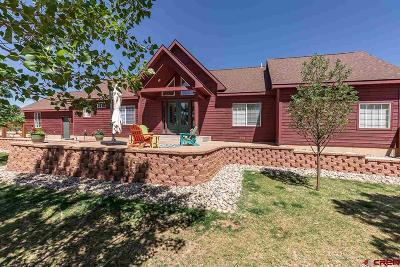 Durango Single Family Home For Sale: 480 Chamisa Drive