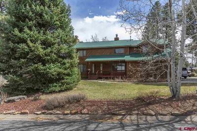 Durango Single Family Home For Sale: 196 Oak Drive