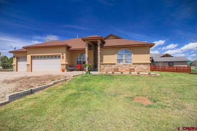 Pagosa Springs Single Family Home For Sale: 110 Bayview Circle