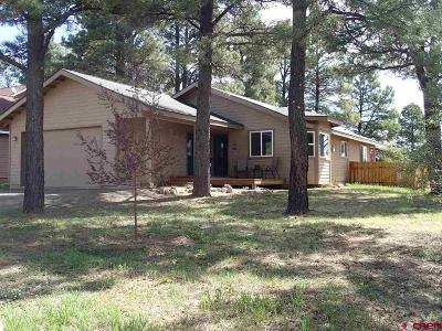Pagosa Springs Single Family Home For Sale: 133 Lakewood Street