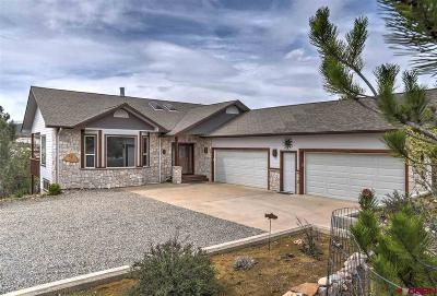La Plata County Single Family Home For Sale: 454 Oso Grande