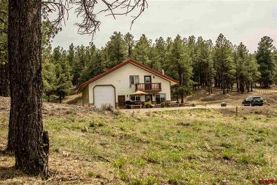 Pagosa Springs Single Family Home For Sale: 2729 Cr 119