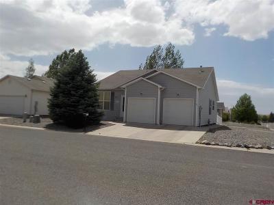Montrose Single Family Home For Sale: 2716 Abrams Avenue