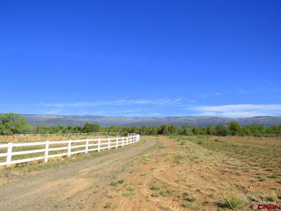 Cedaredge Residential Lots & Land For Sale: Painted Fork Road