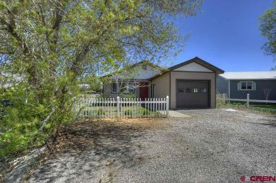 Bayfield Single Family Home UC/Contingent/Call LB: 60 S Los Pinos Dr