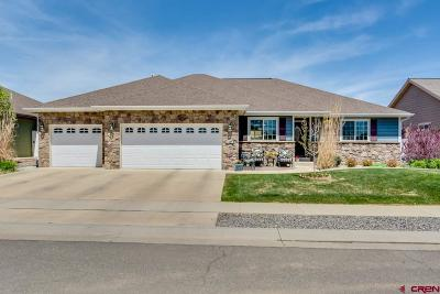 Montrose Single Family Home UC/Contingent/Call LB: 1427 River Rock Drive