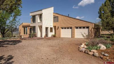 Durango Single Family Home For Sale: 210 Sage Road