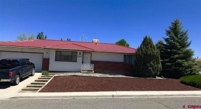 Montrose Single Family Home For Sale: 2279 Elizabeth Way