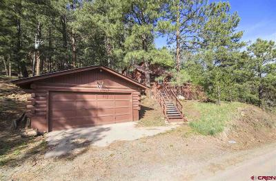 Pagosa Springs Single Family Home For Sale: 295 Cr 339