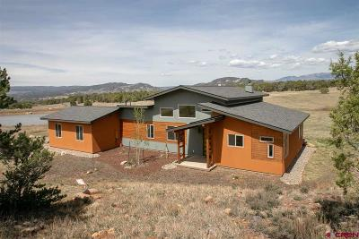 Durango Single Family Home For Sale: 464 Dreamy Draw