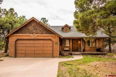 Pagosa Springs Single Family Home For Sale: 664 Antelope Avenue